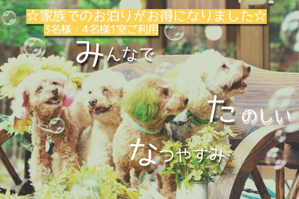☆愛犬と気軽に楽しむ旅応援プラン☆